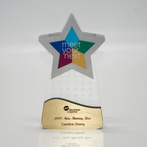 New Design Acrylic Award Trophy